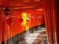 Svatyně Fushimi Inari